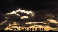 Východ slunce při osmidenním etapovém závodu dvojic na horských kolech Cape Epic v Jihoafrické republice. (Canon EOS 1DX, EF 70-200 2,8 IS USM L II, 1/2000 s, f/7,1, ISO 125)