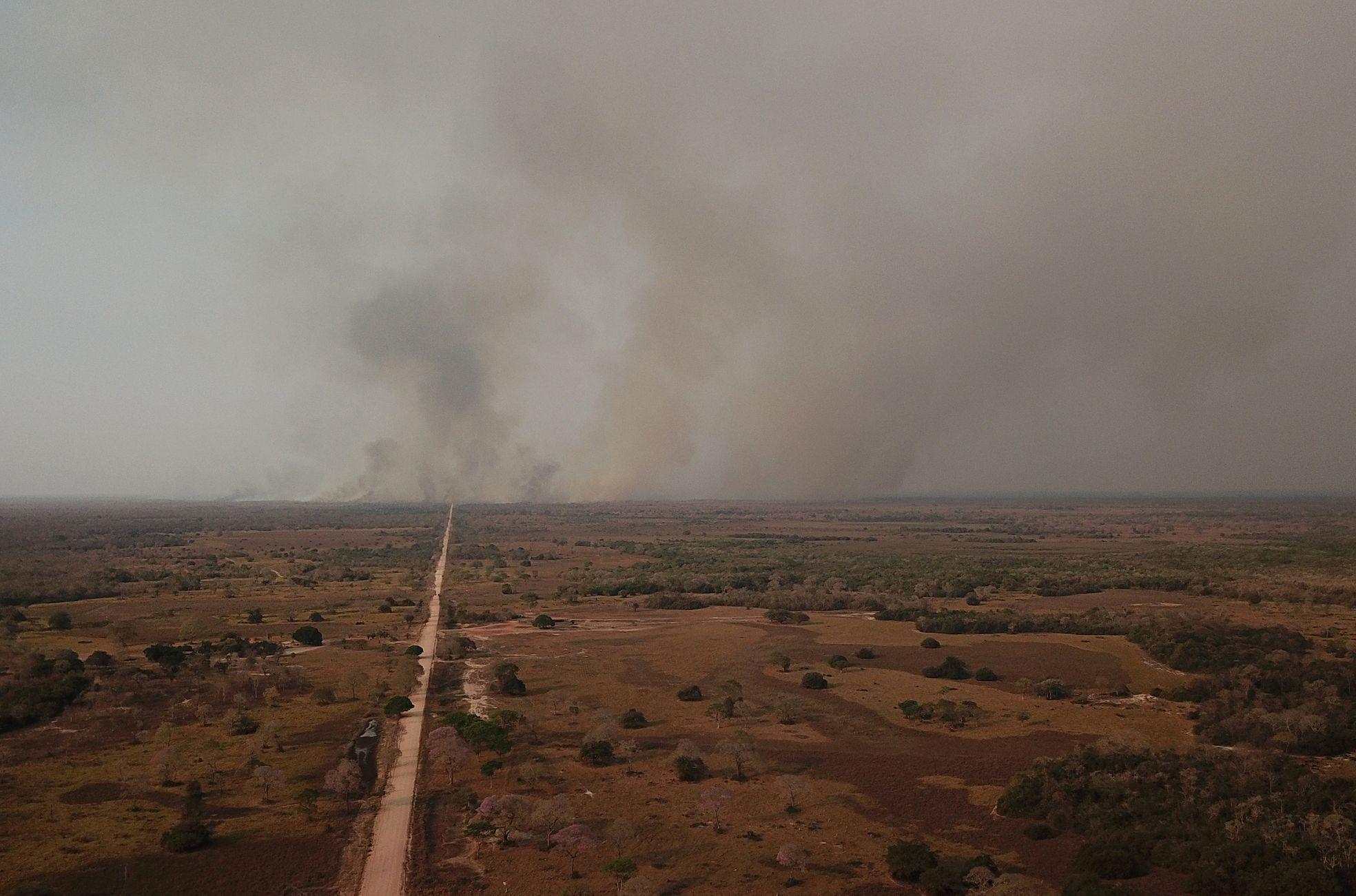 Letos amazonský prales mizí ještě rychleji než loni. I to přispívá k rekordním požárům v největším mokřadu světa.