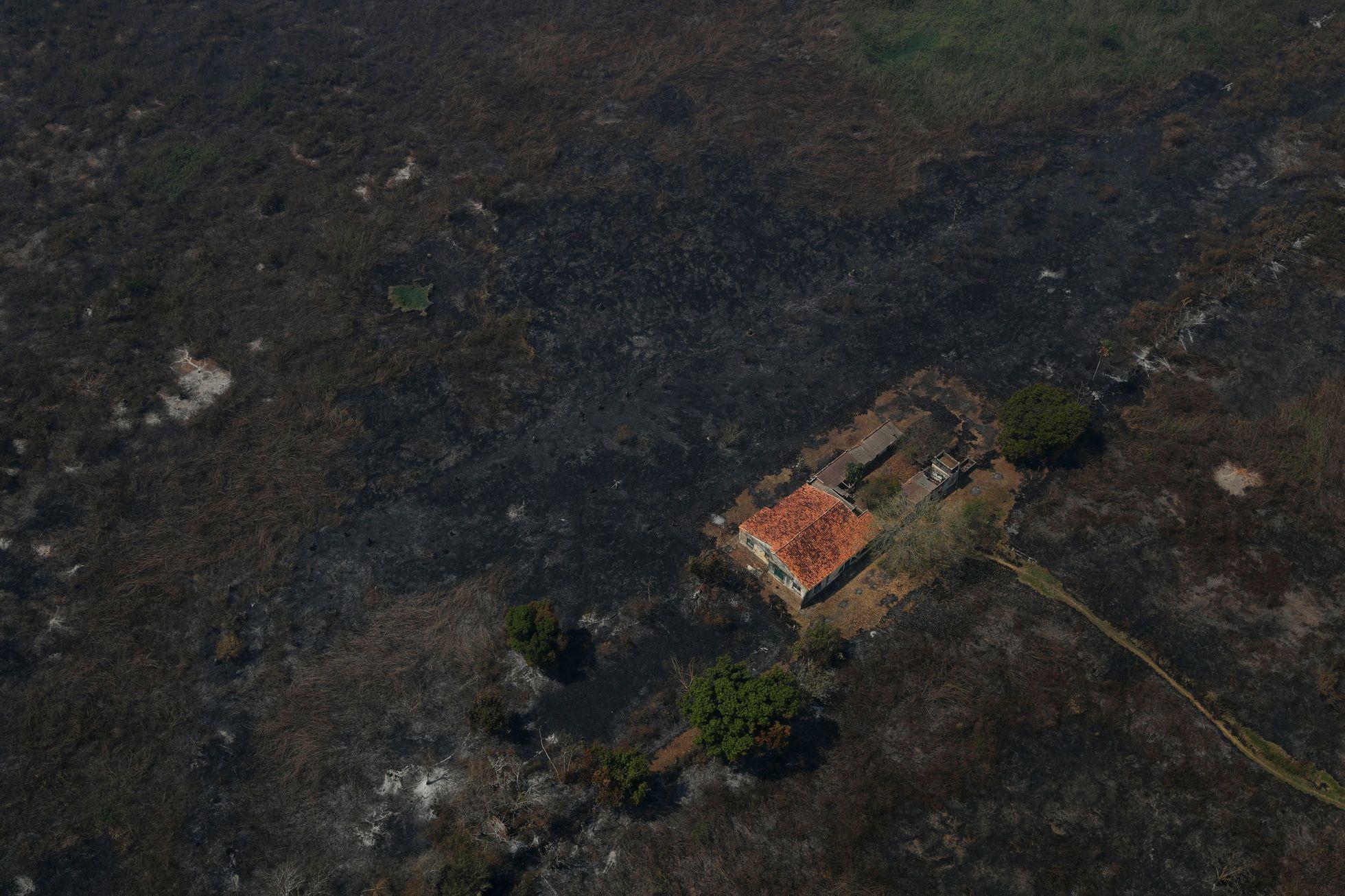 Místo toho teď přišel oheň. Nejvíce požárů od konce 90. let, kdy se začalo s jejich monitorováním.